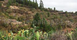 Terreno edificable en Tijarafe