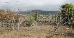 2 Casas en El Paso