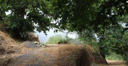 Bodega y Cueva en Garafia