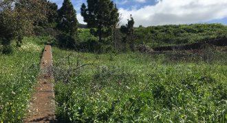Parcela agrícola
