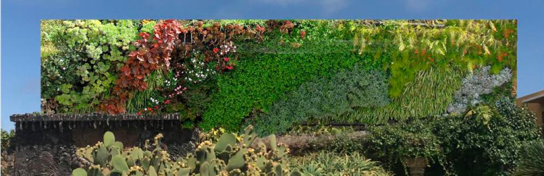 Jardín vertical para la Plaza de la Glorieta
