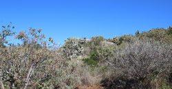 ID 10198 Turístico en Puntagorda
