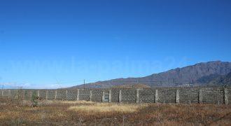 Gran finca en Tazacorte