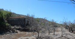 Tijarafe (incl. licencia)