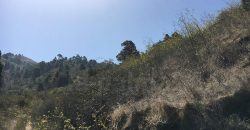 ID 7161 Terreno turístico en Puntagorda